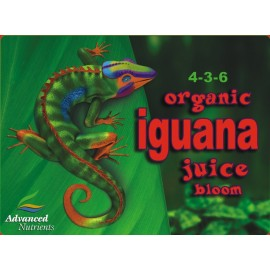 Iguana Juice Bloom 1 L