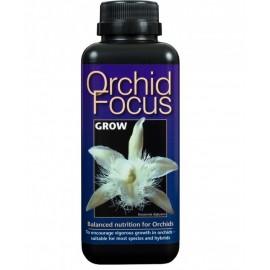 Orchid Focus для роста