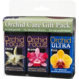 Orchid Focus Gift Pack
