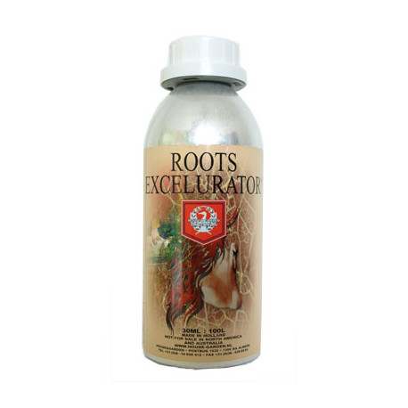 H&G Roots Excelurator