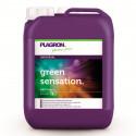 Green Sensation - 5 литров