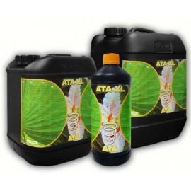 ATA XL 5л