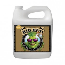 Big Bud Coco Liquid 5L