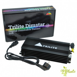 Балласт Trilite Dimstar   600W