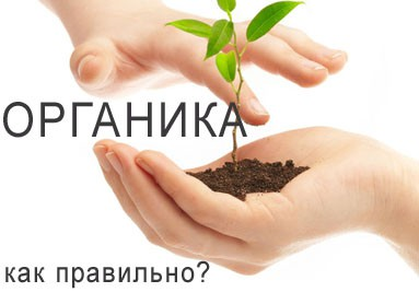 Как правильно вырастить органические продукты