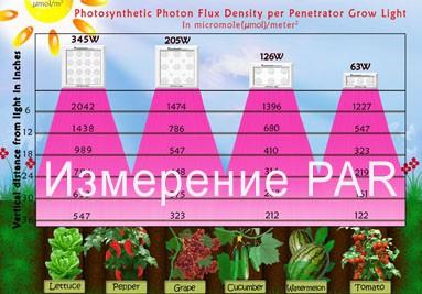 Измерение фотосинтетической автивности разных ламп в гидропонике